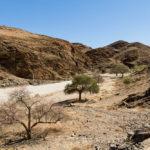 08.29. – Vastness of Namib