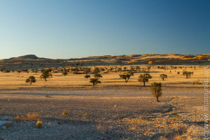 Tsondab-Valley (die Aussicht vom WC - a kilátás a WC-röl)