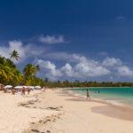 Martinique – Ein riesiger Yachthafen und ein langer Sandstrand